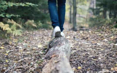 Zeitplanung, Life-Work-Balance und Burnout-Prävention
